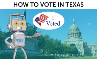 Roger H Lam, Aceable, how to vote in texas