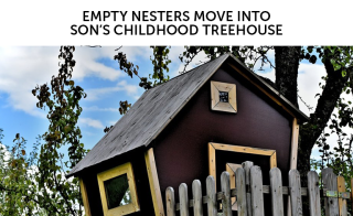 Roger H Lam empty nesters move into son's childhood treehouse.png